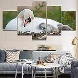 mmwin Cartel de la Obra HD Imprime Decoración para el hogar 5 Unidades Animal Arte de la Pared Cisne Modular Kids Room Cuadros Fotos Lienzo de Trabajo