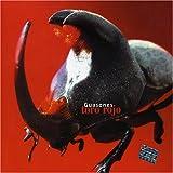 Songtexte von Guasones - Toro rojo