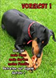 INDIGOS UG - Türschild FunSchild - SE442 DIN A5 ACHTUNG Hund Deutscher Pinscher - für Käfig, Zwinger, Haustier, Tür, Tier, Aquarium - aus hochwertigem Alu-Dibond beschriftet sehr stabil