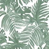 carta da parati foglie di palma verde grigiastro - 935265 - di Sanders & Sanders