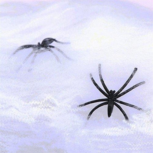 Halloween Deko, FNKDOR 2 Spinnen + 1 Baumwolldraht Spinnweben (Queen Kostüm Kostüm Beauty)