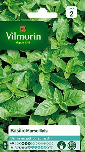 vilmorin-5873246-pack-de-graines-basilic-marseillais-extrmement-parfum