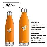 Aorin 500ml Trinkflasche (Orange) - 6
