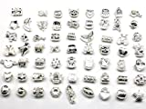 Nambeads 10 x Mixed Shiny Silver plated Charms to fit Pandora style charm bracelets