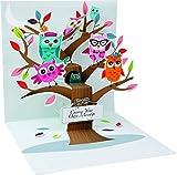 PopUP 3D Geburtstag Liebe Grußkarte PopShot Eulen im Baum 13x13cm