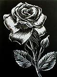 WASO-Hobby - 4er Scrapy Kratzbilder Set - 4 Kratzbilder - Blumenmotive