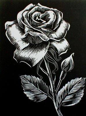 WASO-Hobby - 4er Scrapy Kratzbilder Set - 4 Kratzbilder - Blumenmotive / Silber *Groß*
