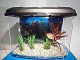 Fish Around Kleines Aquarium, inkl. Ersatzfilterpads
