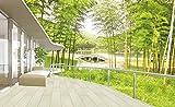 Tsqqst Fototapete 3D Grün Natur Bambus Tapete 3D Tapete Wohnzimmer Schlafzimmer Studie Tv Rückwand Nahtlose Vlies Fresko