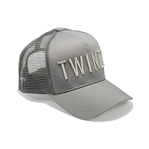 b6a538c4827 Twinzz 3D Mesh Trucker Snapback Cap Grey Silver-One Size