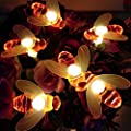 Solar LED Bienen Lichterkette, Mr.Twinklelight 30 LED