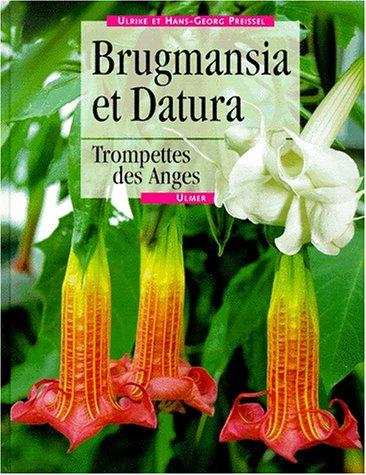 Brugmansia et Datura : Trompettes des Anges
