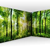 murando - Eckfototapete Wald 550x250 cm - Vlies Tapete - Moderne Wanddeko - Design Tapete - Wandtapete - Wand Dekoration - Landschaft Natur grün Baum c-A-0058-a-b