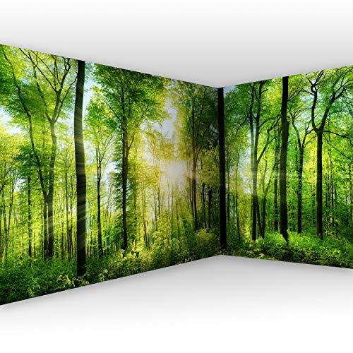 murando - Eckfototapete Wald 550x250 cm - Vlies Tapete - Moderne Wanddeko - Design Tapete - Wandtapete - Wand Dekoration - Landschaft Natur grün Baum c-A-0058-a-b -