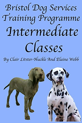 Bristol Dog Services Training Programme Intermediate Classes (English Edition)