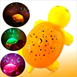 3D Projection Turtle Effects Light And M...
