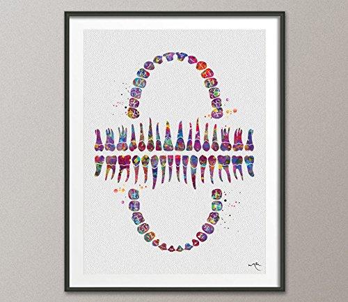 Tabla de dientes diente de impresión de acuarela arte anatómico Dental Clinic Decoración Arte Odontología estudiante ciencia Graduaiton dentista regalo médico art-1039, M, 5.83 x 8.27