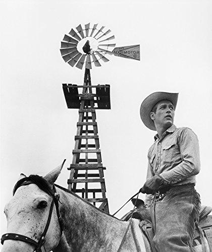 Paul Newman (1925-2008). /Namerican Actor. In The 1963 Film Hud. Kunstdruck (60,96 x 91,44 cm) -