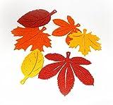 Herbstblätter aus Filz 12er-Set
