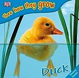 Angela Royston Libros infantiles de patos