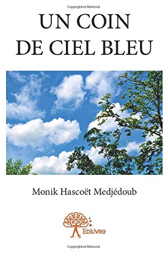 Un coin de ciel bleu par Monik Hascoët Medjédoub