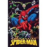 Official Merchandise Póster - The Amazing Spider Man