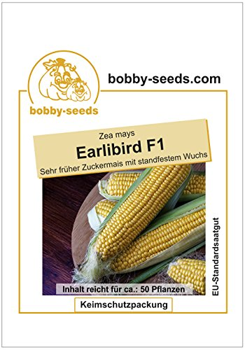 Bobby-Seeds Maissamen Earlibird F1 Zuckermais Portion