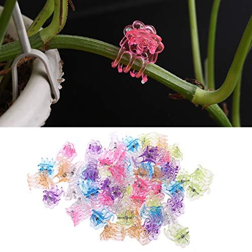 Guoyy - clip di sostegno per piante in plastica, 60 pezzi