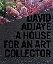 David Adjaye: A House for an Art Collector by David Adjaye (2011-03-22)