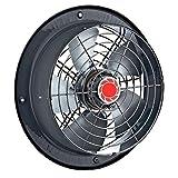 Ventilatore industriale da 250 mm, da parete, in metallo, 230 V, a motore, aspirazione assiale e ventilazione radiale