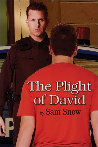 The Plight of David Cover Image