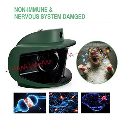 LQFLD Elektronischer Ultraschall-Schädlingsbekämpfer für den Innenbereich Maus/Mäuse/Nagetier/Insektenschutzmittel