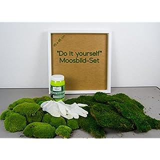 DIY Moosbild Selber Machen, Wandbilder Selber Kleben, Moosbilder Selbst  Gestalten, Do It Yourself