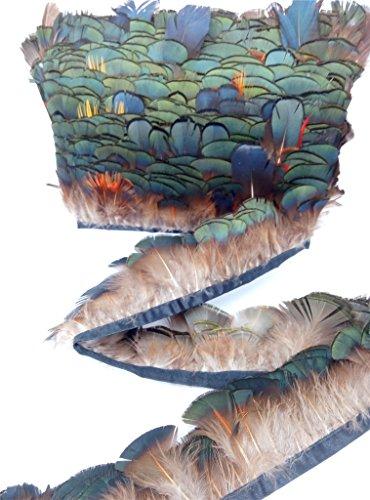 ERGEOB Fasan grünen Federn Stoffstreifen 2 meter - Ideen für die Bekleidung, Kostüme, Hüte.. ()