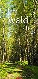Im Wald 2015 -