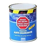 Peinture anti humidité cave sous-sol salle de bain sdb mur humide anti moisissure salpêtre isolante ARCASCREEN