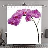 Duschvorhang 268289879Pink Orchid mit langem Stiel isoliert auf weiß Polyester-Hintergrund-Bad Vorhang