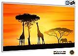 IH Engineering BV Bild Infrarotheizung (130W/300W/450W/600W/800W/1000W) mit 5 Jahren Garantie (800, Sonnenuntergang Afrika mit Elefanten und Giraffen)