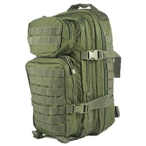 51JEIac%2BO L. SS300  - Mil-Tec MOLLE Tactical Assault Backpack, 20 Litre
