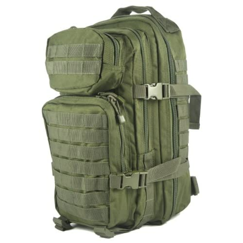 51JEIac%2BO L. SS500  - Mil-Tec MOLLE Tactical Assault Backpack, 20 Litre