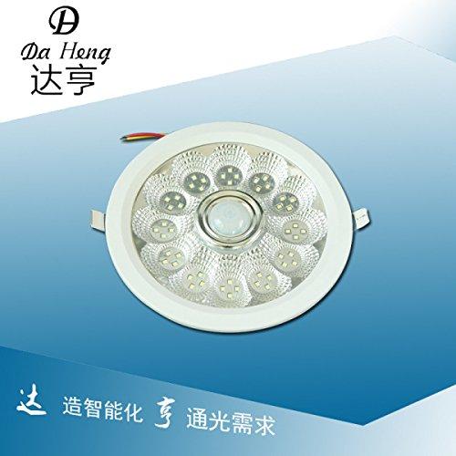 10w-eingebettet-ist-sensor-deckenleuchte-decken-bad-korperinduktionslampe-220-v-eingangsspannung-agg