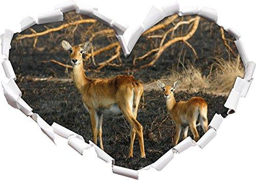 gazzella femminile a forma di cuore giovane in Formato aspetto,