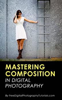 Mastering the Art of Photography Composition: Learn Tips and Tricks for Better Creative Photos for Beginners and Intermediate Photographers by [Jones, David]