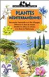 Plantes méditerranéennes...