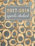 Telecharger Livres Agenda etudiant Planning scolaire hebdomadaire cœurs et volants dore metallique sur bleu marine (PDF,EPUB,MOBI) gratuits en Francaise