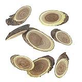 Floral-Direkt ca 30 Astscheiben 4-8cm Pagodenbaum Holzscheiben Scheiben Holz