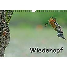Wiedehopf (Wandkalender 2018 DIN A4 quer): Faszinierende Aufnahmen aus dem Alltag eines Wiedehopfpaares (Monatskalender, 14 Seiten ) (CALVENDO Tiere) [Kalender] [Apr 01, 2017] Wolf, Gerald