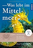 Was lebt im Mittelmeer? - Matthias Bergbauer