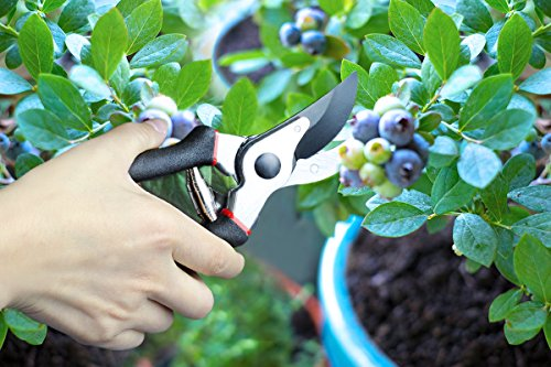 SHINE HAI Pro Bypass Secateurs, Heavy Duty Garden Pruner, Razor Sharp SK5 Carbon Steel Blades for Precise Cuts, Lightweight Comfort, Best For Trees, Plants, Hedges