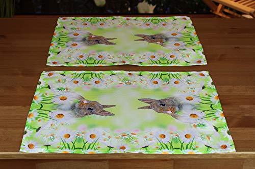 Kamaca Serie HASE IM Gras hochwertiges Druck-Motiv mit süssen Hasen Eyecatcher in Frühling Ostern (2er Set Tischset 35 x 50 cm)